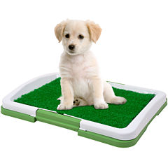 PAW™ Puppy Potty Trainer