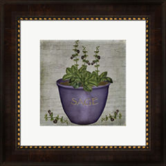 Herb Sage Framed Wall Art