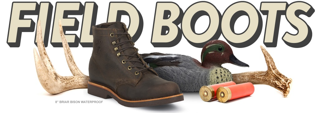 footwear_field