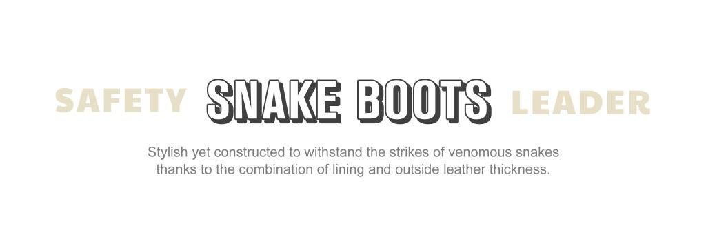 footwear_field_snake