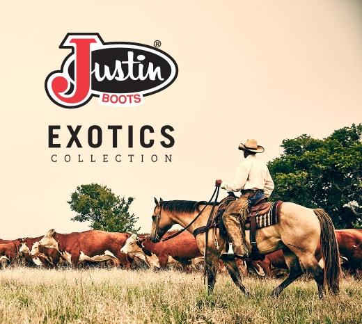 men_collections_exotics