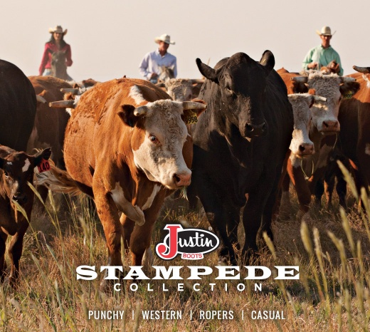 women_collections_stampede