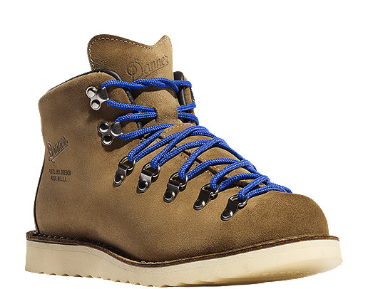 photo: Danner Mountain Light Terminal 4 hiking boot