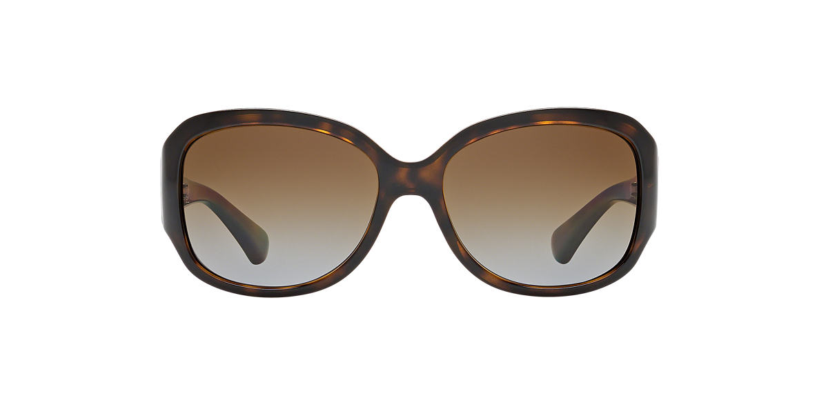 DOLCE and GABBANA Tortoise DD8065 Brown polarized lenses 59mm
