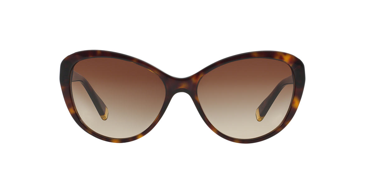 DKNY (SUN) Brown DY4084 Brown lenses 57mm
