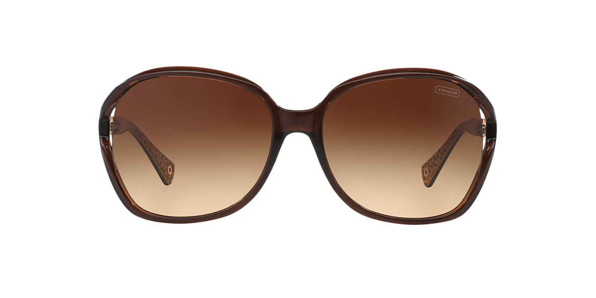 COACH Brown HC8018  NATASHA Brown lenses 60mm