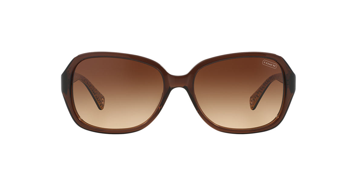 COACH Brown HC8019  BEATRICE Brown lenses 60mm