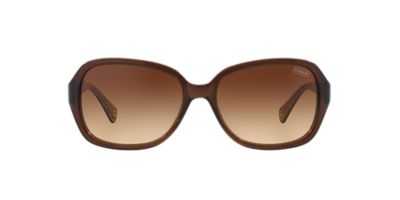 Coach Eyeglass Frame Warranty : NEW SUNGLASSES COACH BEATRICE HC8019 in Brown eBay