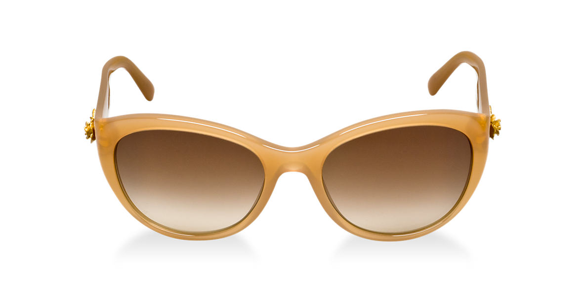 DOLCE and GABBANA Brown DG4160 Brown lenses 54mm