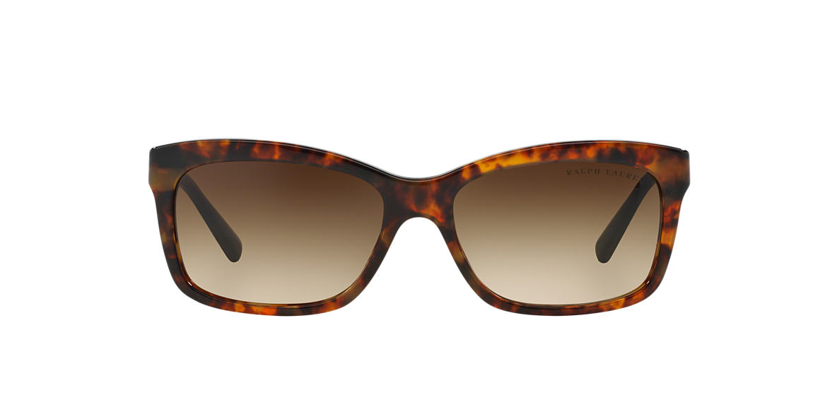 RALPH LAUREN Tortoise RL8093 Brown lenses 56mm