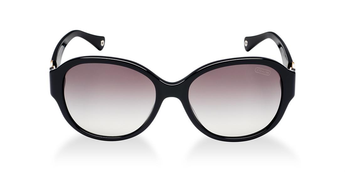 Image for HC8051 from Sunglass Hut Australia   Sunglasses for Men, Women & Kids