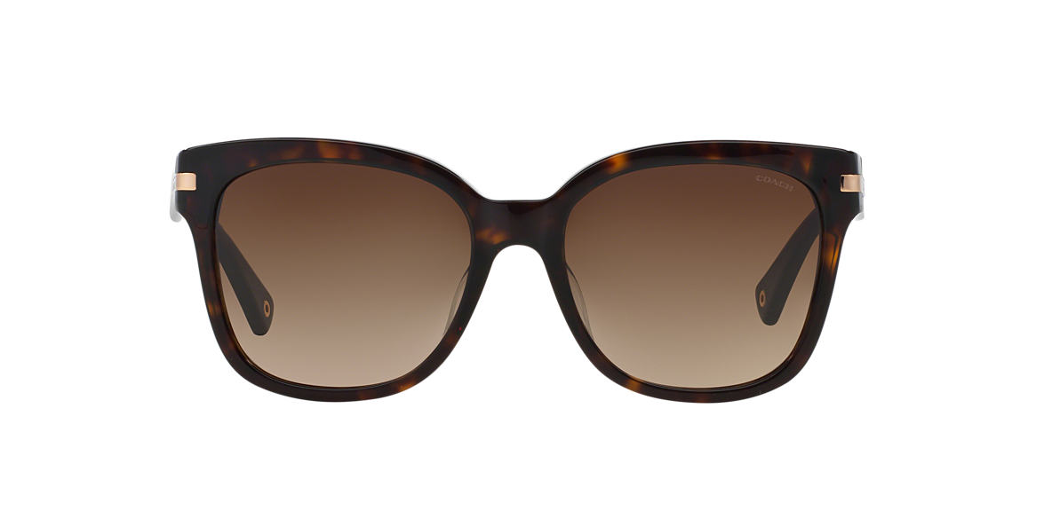 COACH Tortoise HC8103 ALFIE Brown lenses 55mm