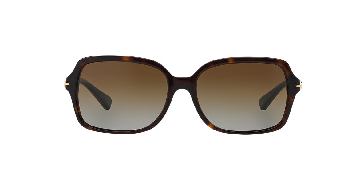 COACH Tortoise HC8116 56 Brown polarized lenses 56mm
