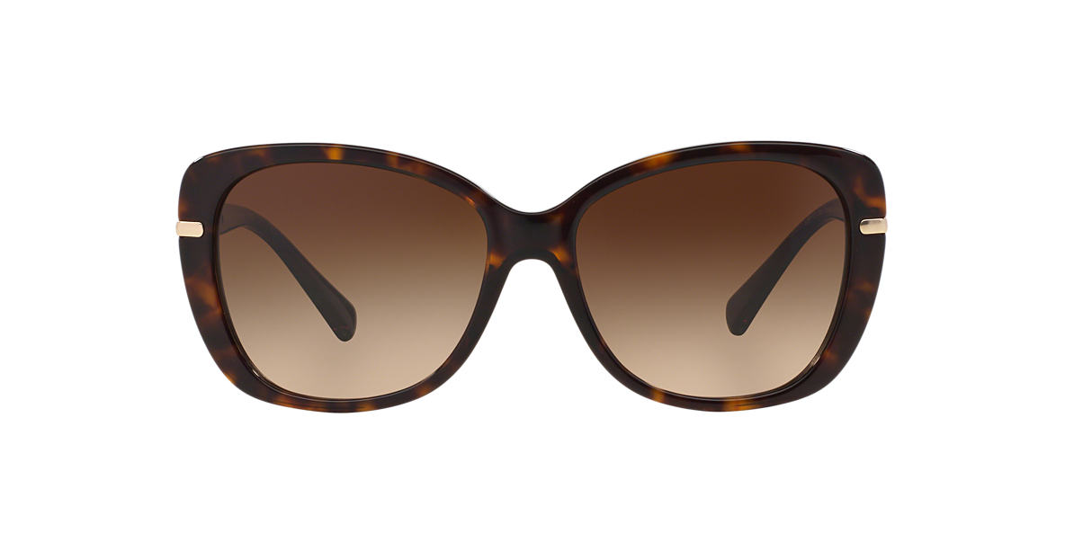 COACH Tortoise HC8131 58 L108 Brown lenses 58mm