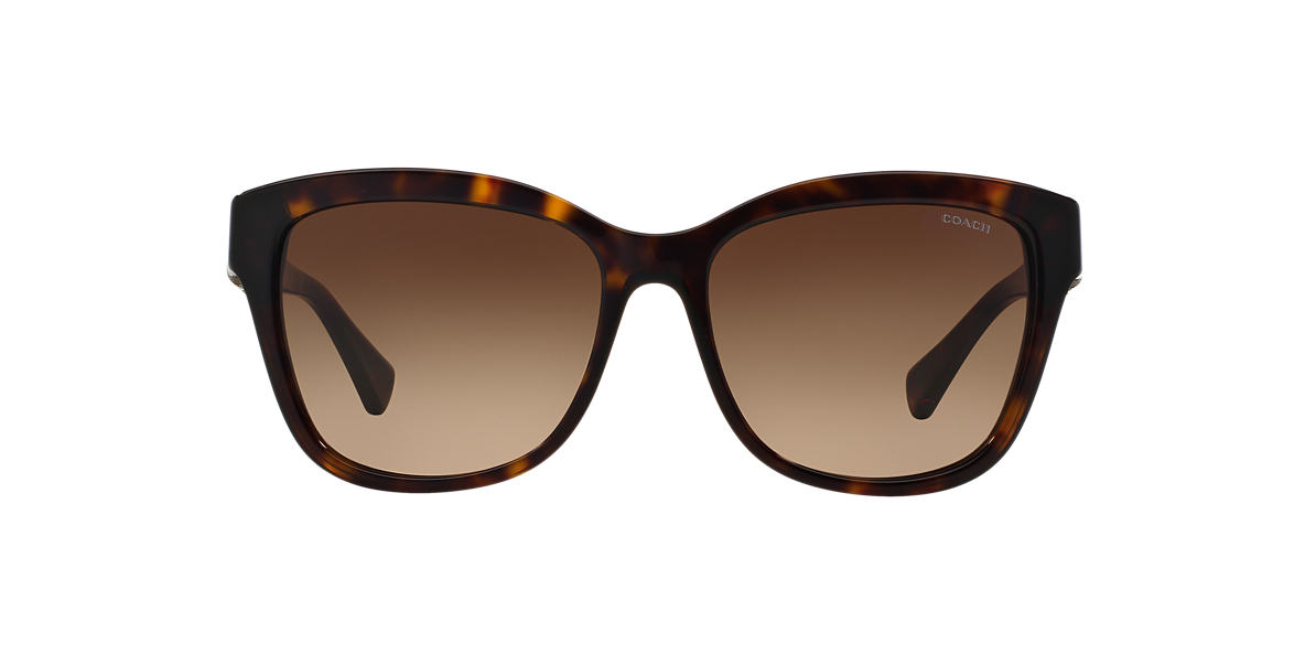 COACH Tortoise HC8156Q 56 L131 Brown lenses 56mm