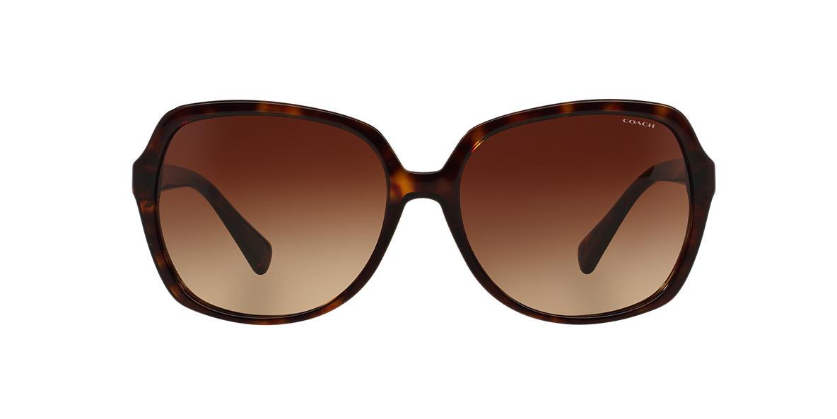 COACH Tortoise HC8155Q 59 L130 Brown lenses 59mm