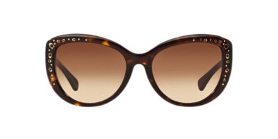 Coach Eyeglass Frame Warranty : NEW SUNGLASSES COACH SIGNATURE SPRAY HC8162 in Tortoise eBay