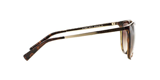 AX4048SL