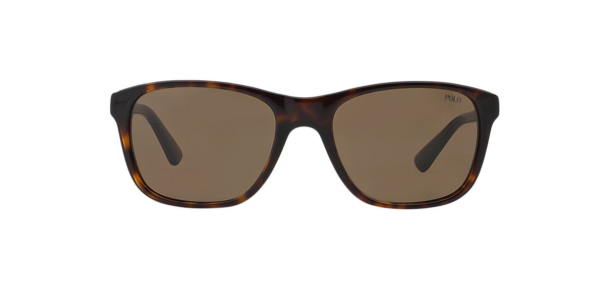 POLO RALPH LAUREN Brown PH4085 55 Brown lenses 55mm