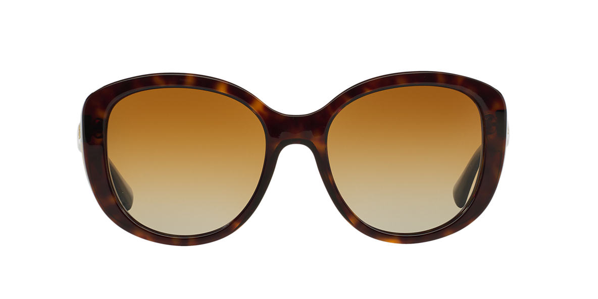 DOLCE AND GABBANA Brown DG4248 55 Brown polarised lenses 55mm