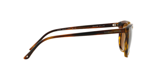 AR8060