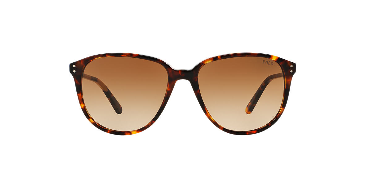 POLO RALPH LAUREN Brown PH4097 54 Brown lenses 54mm
