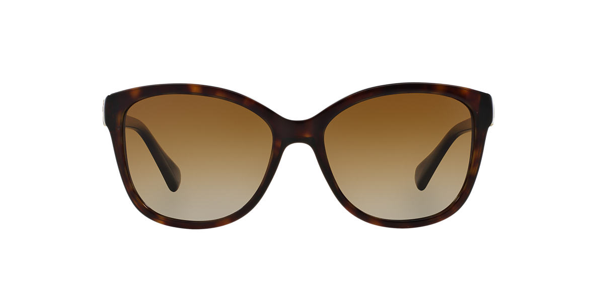 DOLCE AND GABBANA Brown DG4258 56 Brown polarised lenses 56mm