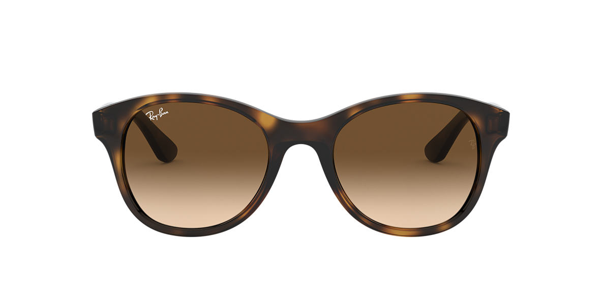 RAY-BAN Brown RB4203 Brown lenses 51mm