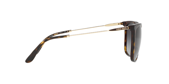 AR8080