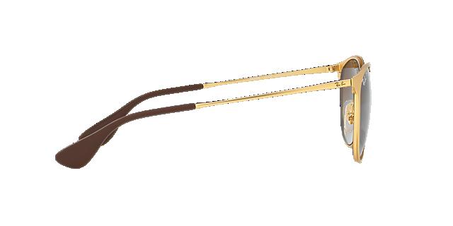 RB3539 Erika Metal