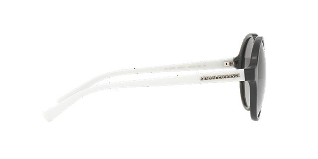 AX4059S