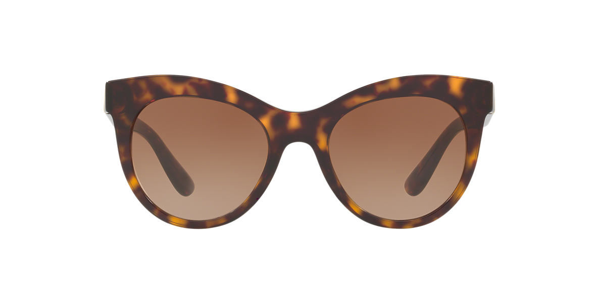 DOLCE AND GABBANA Brown DG4311 51 Brown lenses 51mm