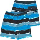 Fishworks Stripes Boardshorts
