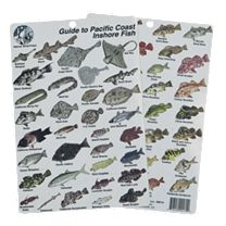 Guide To Pacific Inshore Fish I.D. Card