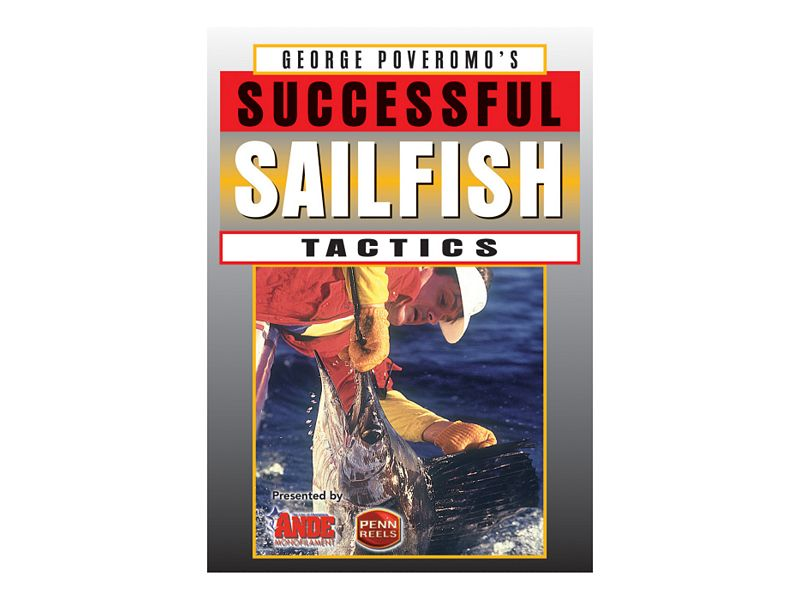Successful Sailfish Tactics