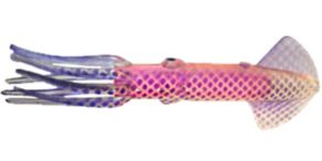 Moldcraft Squirt Nation Squids - Clear/Pink/Purple