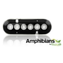 OceanLED A6 Amphibian Lights