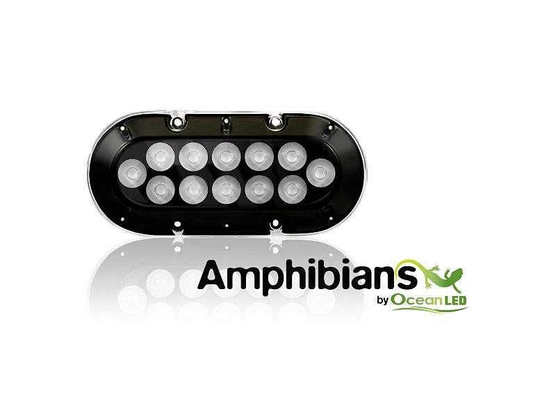 OceanLED A12 Amphibian Lights