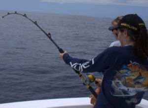 Josie did a great job pulling the estimated 60-70 lb. white marlin to the boat.