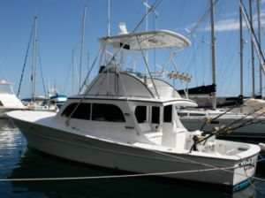 The Grander patiently sits at her slip in Calheta Harbor, awaiting another action packed season of chasing Granders.