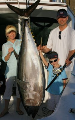 230 lb. Bigeye Tuna