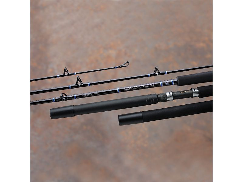 Daiwa Saltist Boat Conventional Rods