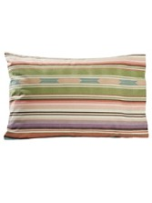 Agave Stripe Flannel Pillow Cases
