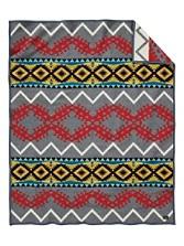 Cactus Trail Blanket