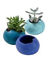 Succulent Cachepots, Set Of 3
