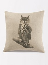 Hoot Owl Pillow