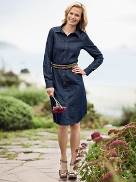 Wayward Denim Shirt Dress