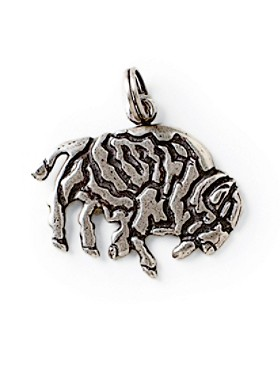 Sterling Buffalo Creation Story Charm