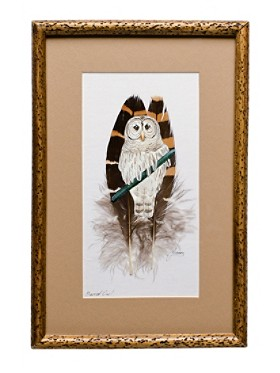 Barred Owl On Feather Framed Art