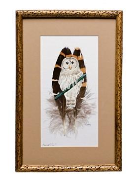 Barred Owl On Feather Framed Art